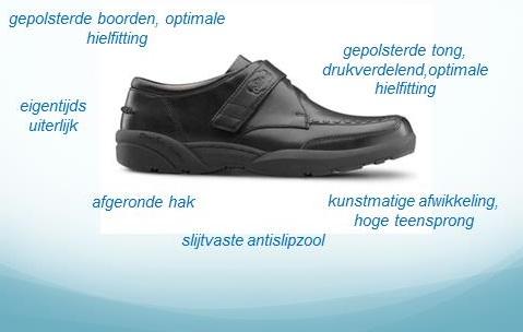 de verantwoorde schoen